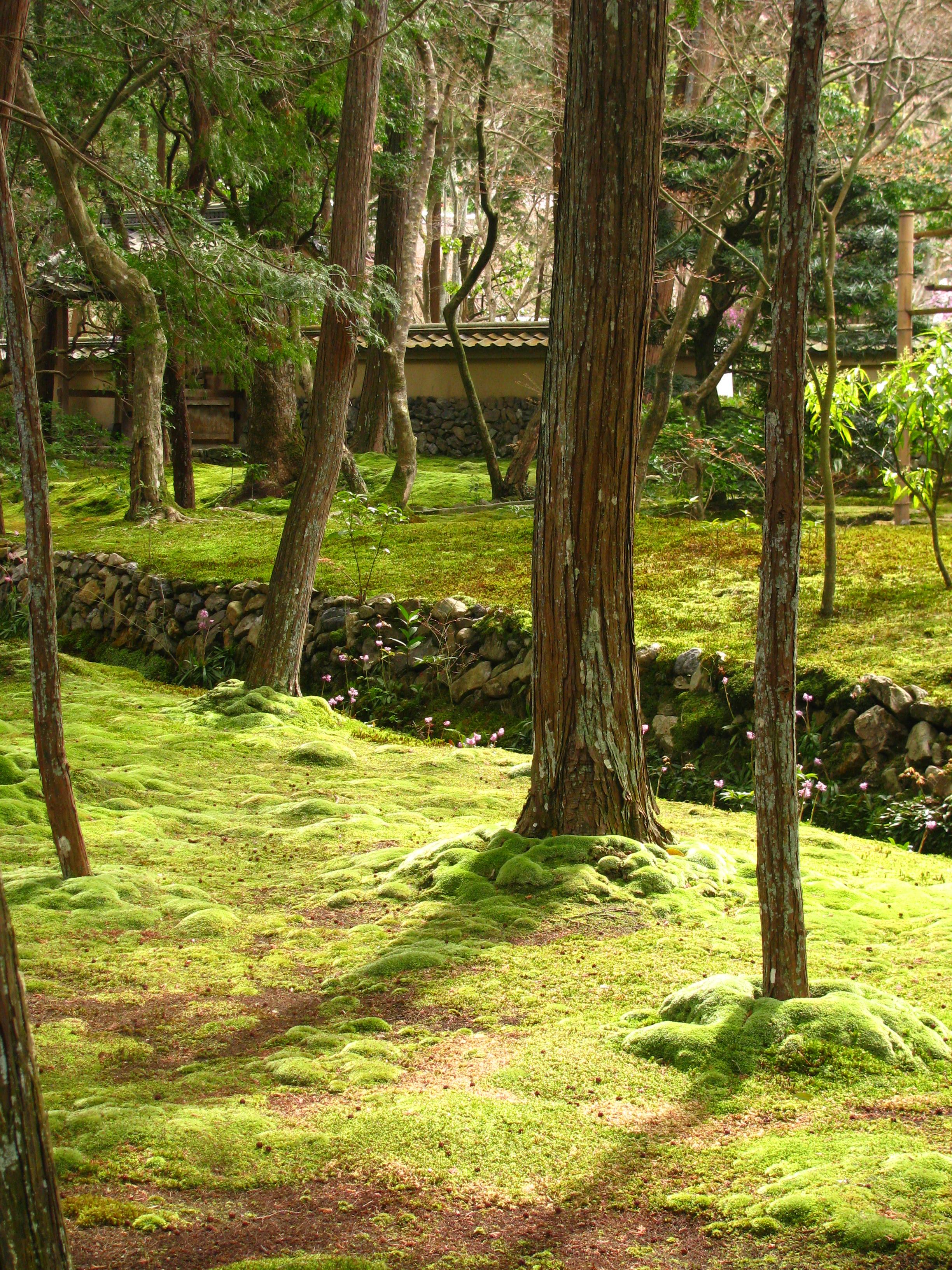 moss garden kyoto