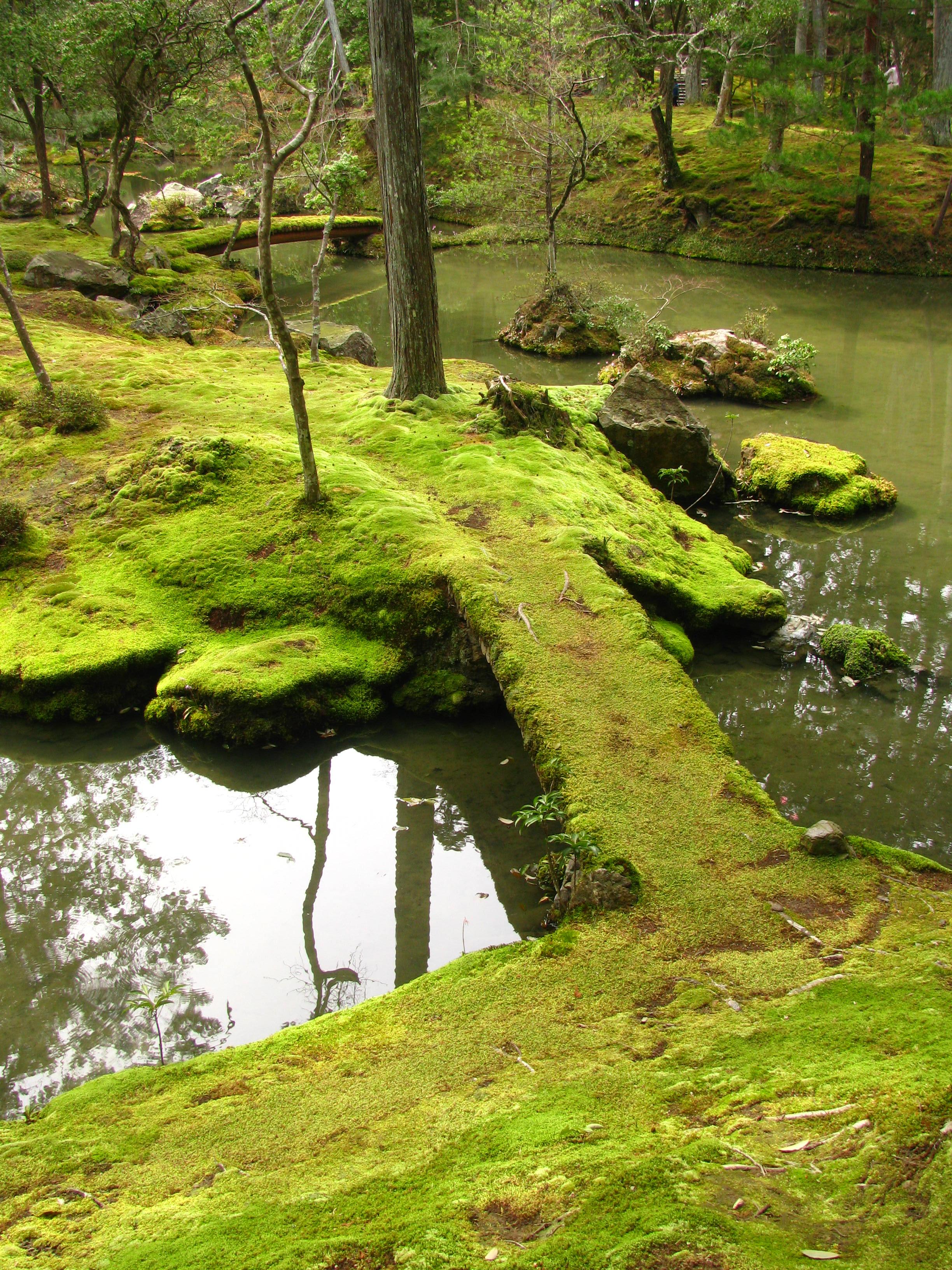 moss garden saiho-ji kyoto
