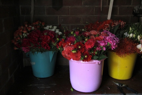 Coloured flower buckets