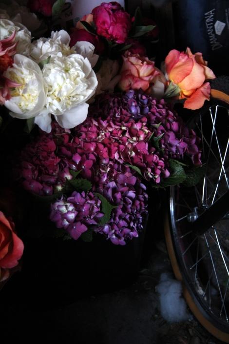 Peony, hydrangea and bike